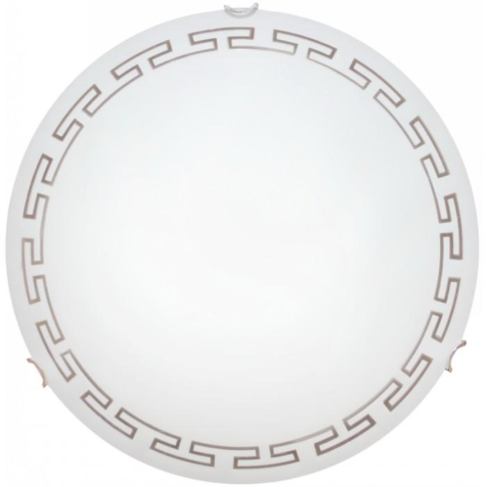 Светильник настенно-потолочный Arte lamp A4220pl-2cc