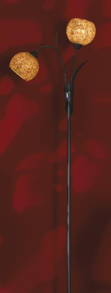 Торшер Lussole Lsf-6205-02