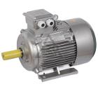 Электродвигатель IEK DRV080-B2-002-2-3010