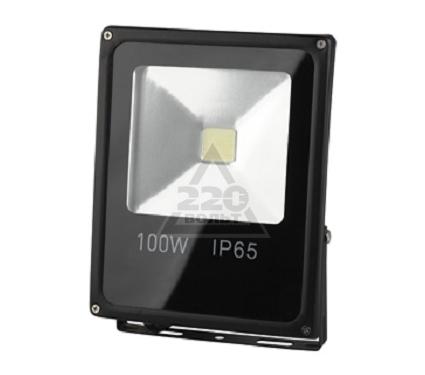 Прожектор светодиодный ЭРА LPR-100-6500К-М