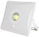 Прожектор светодиодный UNIEL ULF-F31-10W/DW