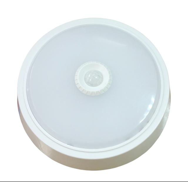 Светильник настенно-потолочный Llt СПБ-2Д 155-5