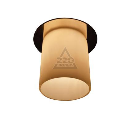 Светильник встраиваемый ARTE LAMP A8551PL-1CC