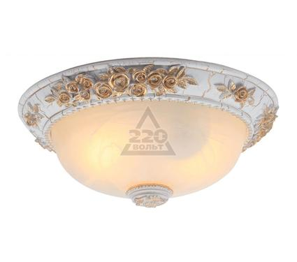 Светильник настенно-потолочный ARTE LAMP A7101PL-2WG
