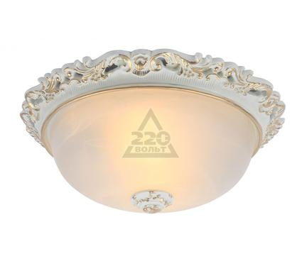 Светильник настенно-потолочный ARTE LAMP A7151PL-2WG