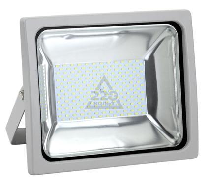 Прожектор светодиодный LEEK LE FL SMD LED1 100W CW