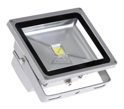 Прожектор светодиодный JAZZWAY PFL-30W/CW/GR