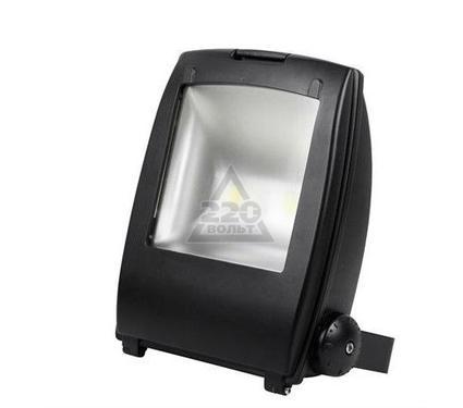 Прожектор светодиодный HOROZ ELECTRIC HL174LBL