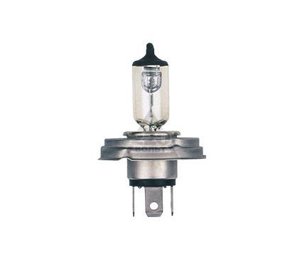 Лампа автомобильная NARVA 48994