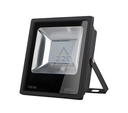 Прожектор светодиодный GAUSS 613100100
