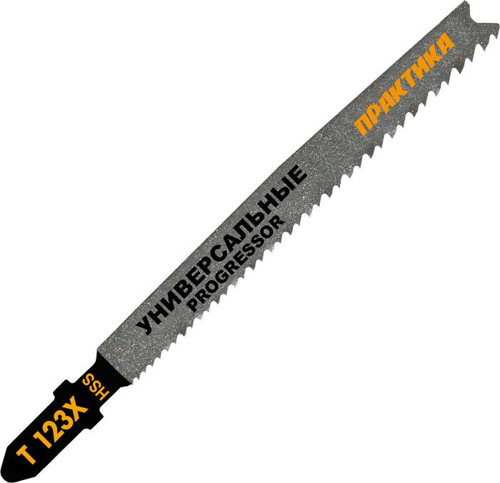 Пилки для лобзика ПРАКТИКА 038-722 t123x progressor 2шт. пилки для лобзика по металлу для прямых пропилов bosch t118a 1 3 мм 5 шт