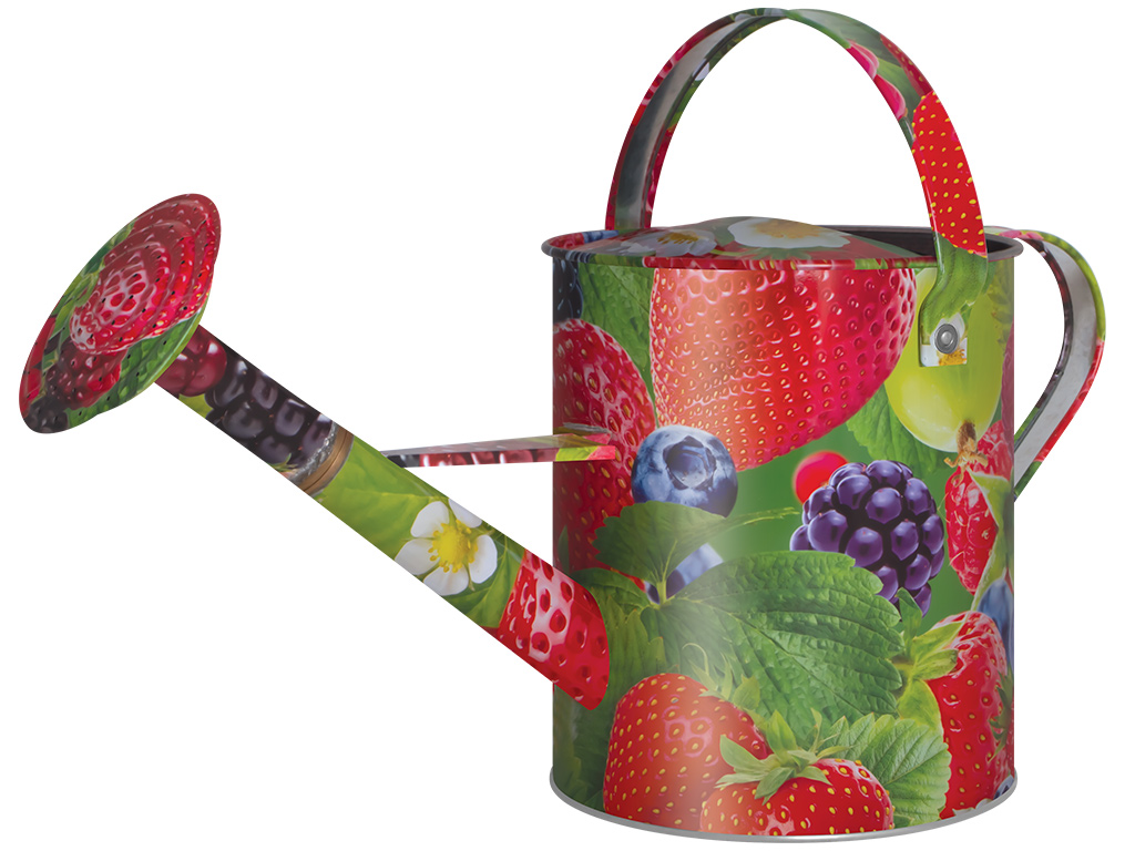 Лейка БЕЛЦЕНТРОМАШЛейки садовые<br>Материал: металл,<br>Объем: 10,<br>Цвет: ягоды,<br>Съемная насадка: есть<br>