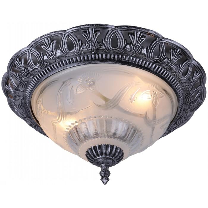Светильник настенно-потолочный Arte lamp Piatti a8001pl-2sb