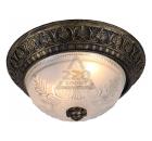 Светильник настенно-потолочный ARTE LAMP PIATTI A8005PL-2BN