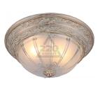 Светильник настенно-потолочный ARTE LAMP PIATTI A8014PL-2WA