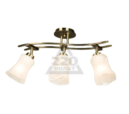 Светильник настенно-потолочный CITILUX CL142133