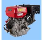 Двигатель DDE DDE190F-S25G