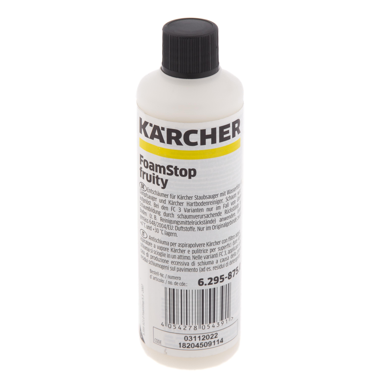 цены Пеногаситель Karcher 6.295-875