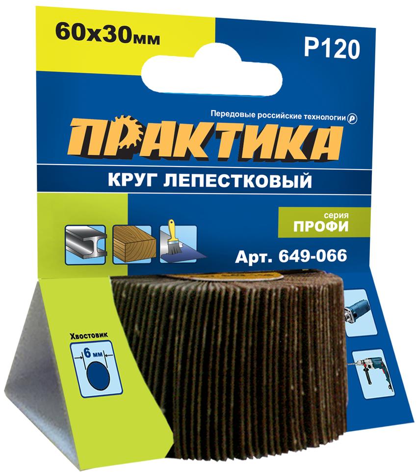 Круг Лепестковый Торцевой (КЛТ) ПРАКТИКА 649-066
