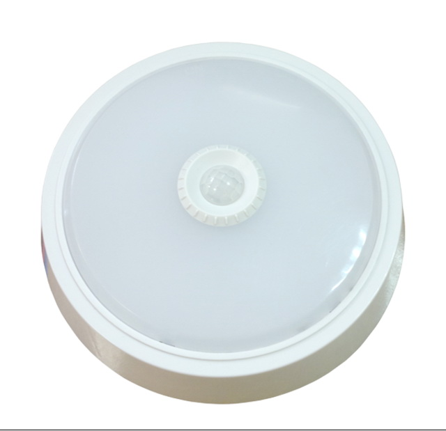 Светильник настенно-потолочный Llt СПБ-2Д 155-5 садовый хозблок в спб