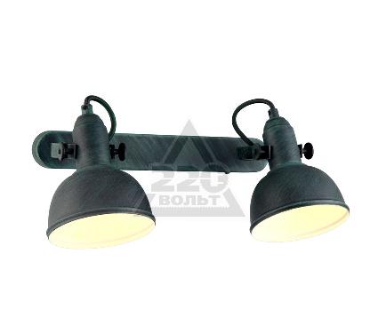 Спот ARTE LAMP MARTIN A5213AP-2BG