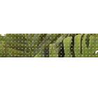 Бордюр керамический ROVESE (CERSANIT) TC1C021DT Tropicana Зелёный 20шт