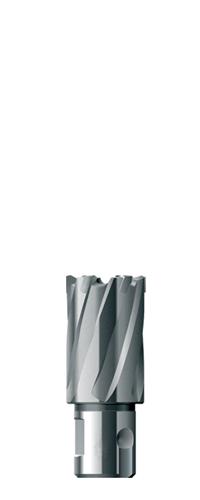 Фреза Fe powertools Fe3016