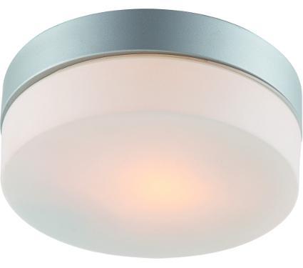 Светильник настенно-потолочный ARTE LAMP A3211PL-1SI