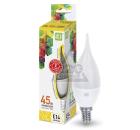 Лампа светодиодная ASD LED-СВЕЧА НА ВЕТРУ-standard 5Вт 230В Е14 3000К