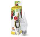 Лампа светодиодная ASD LED-СВЕЧА НА ВЕТРУ-standard 5Вт 230В Е27 3000К