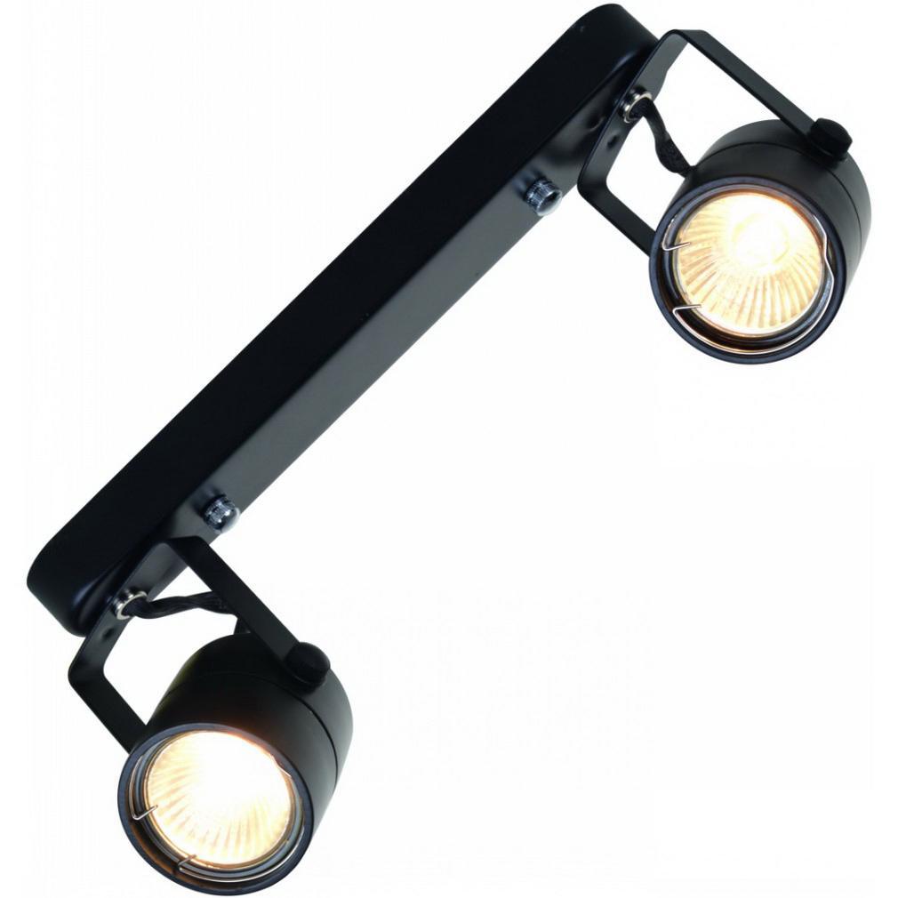 Купить Светильник потолочный Arte lamp A1310pl-2bk