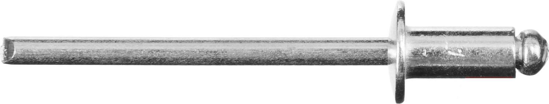 Заклепки ЗУБР Мастер 4.8x25мм 200шт