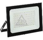 Прожектор светодиодный IEK LPDO601-100-65-K02