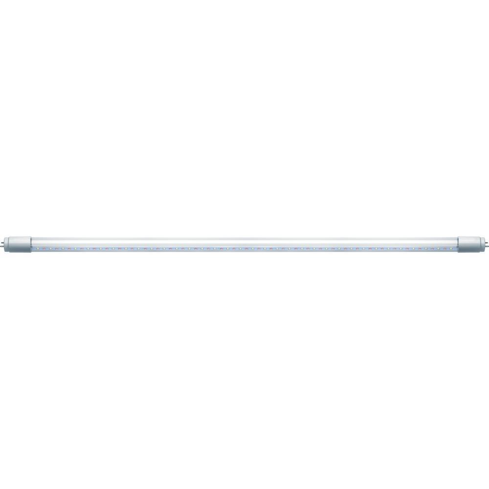 Лампа светодиодная Navigator 61 392 nll-t8-12-230-meat-g13-cl