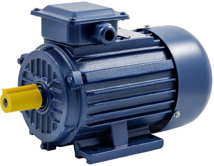Электродвигатель ТМ БЭЗ АИР 56a2 im1081 (32521)