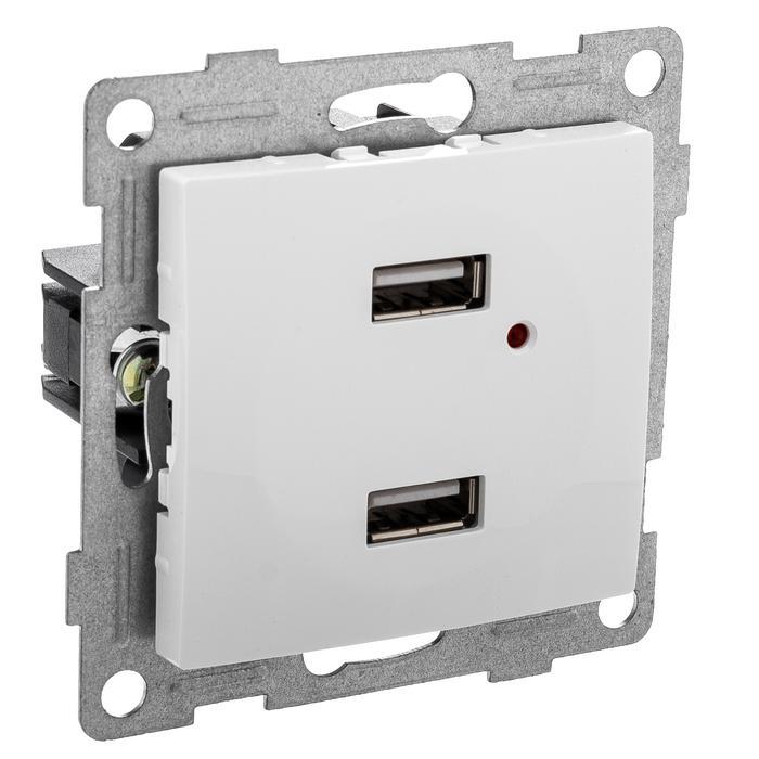 Механизм розетки Gusi electric С10usb2-001
