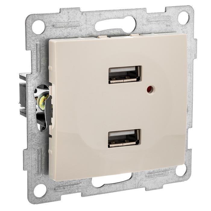 Механизм розетки Gusi electric С10usb2-003