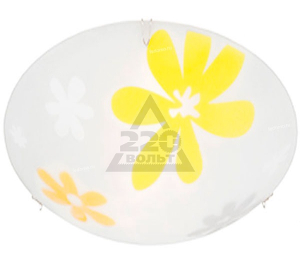 Светильник настенно-потолочный BLITZ 5012-22